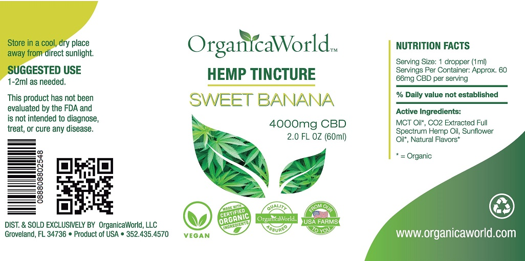 Hemp_Tincture_4000mg_2oz_-_Sweet_Banana25.jpg